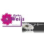 Gebr-Weijs-VOF