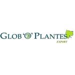 Globo-Plantes-Export-bv