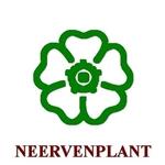 Neervenplant