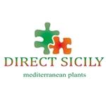 Direct-Sicily