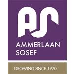 Ammerlaan-Sosef