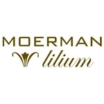Moerman Lilium