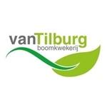 Boomkwekerij-van-Tilburg