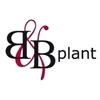 BenB-Plant
