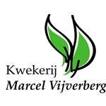 Kwekerij-Marcel-Vijverberg