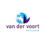 Van-der-Voort-Potplanten-bv
