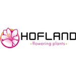 Hofland Flowering Plants