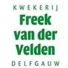 Fa-Freek-van-der-Velden
