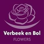 Verbeek-en-Bol