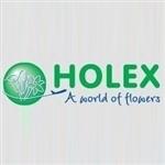 Holex-Flower