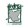 Hedera-Lueske