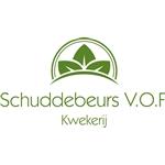 Willem-Schuddebeurs