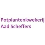 AP-Scheffers