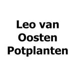 Leo-van-Oosten-Potplanten