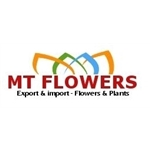 MT-Flowers-BV