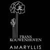 Frans-Kouwenhoven-Amaryllis