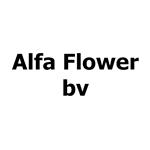 Alfa-Flower-bv
