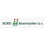 JA-Borst-Bloembollen-BV
