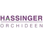 Hassinger-Orchideeën