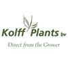 Plants-Online-BV