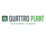 Quattro-Plant