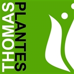 Oskam-Plants-(Thomas-Plantes)