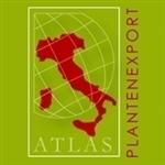Atlas-Plantenexport-BV