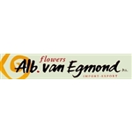 A-van-Egmond-en-Co-BV