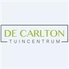 De-Carlton-Marcel-Koene