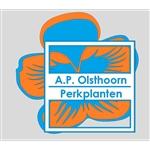 AP-Olsthoorn
