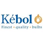 Kebol-BV