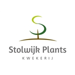 Stolwijk-Plants