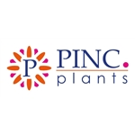 Pinc. Plants