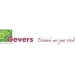 Gevers-Planten