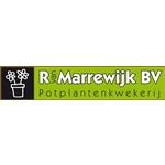 R-van-Marrewijk-BV