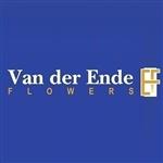 Van-Der-Ende-Flowers