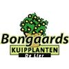 Bongaards