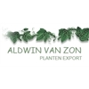 Aldwin-van-Zon-Planten-Export