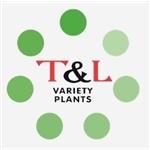 TenL-Variety-Plants-BV