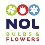 Nol-Bulbs-en-Flowers