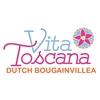Vita-Toscana-Plant
