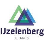 IJzelenberg-Plants