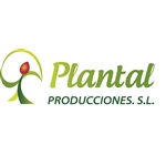 Plantal-Producciones-International