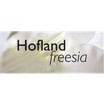 Hoflandfreesia-BV