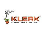Klerk-Topfpflanzen-BV