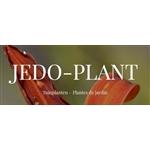 JEDO-PLANT
