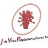 J-de-Vries-Potplantencultures-bv