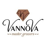VannoVa-KZ-Flowers-BV