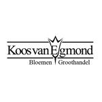 Koos-van-Egmond-bloemengroothandel