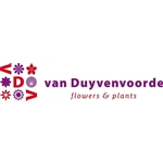 BJ-van-Duyvenvoorde